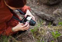 Nuorten taidetyöpajan Kuvi-pajan nuori valokuvaa kasvia